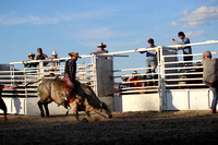 Lake Andes Bullride June 2017